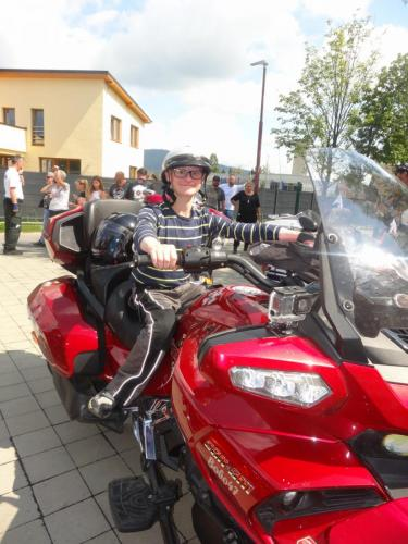 Harley-Davidson (20)